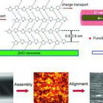 Directed self-assembly of hybrid oxide/polymer core/shell nanowires.