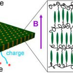 Anisotropic ionic conductivity in block copolymer membranes.