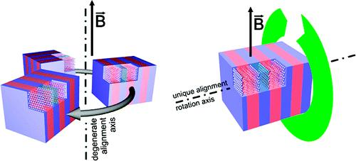 Alignment of lamellar lyotropic mesophases by rotation in a magnetic field.