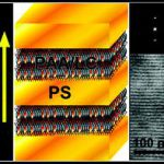 Magnetically-aligned BCP complexed by small liquid crystal molecules.