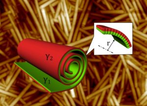 Liquid crystal nanotubes rolling-up mechanism.